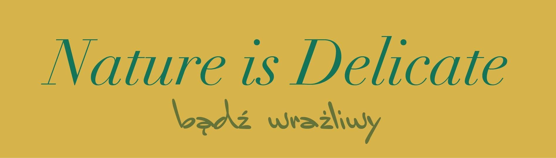 typografiepl